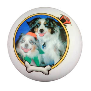 [Image: Remember your favorite pet with this personalized pet keepsake!]